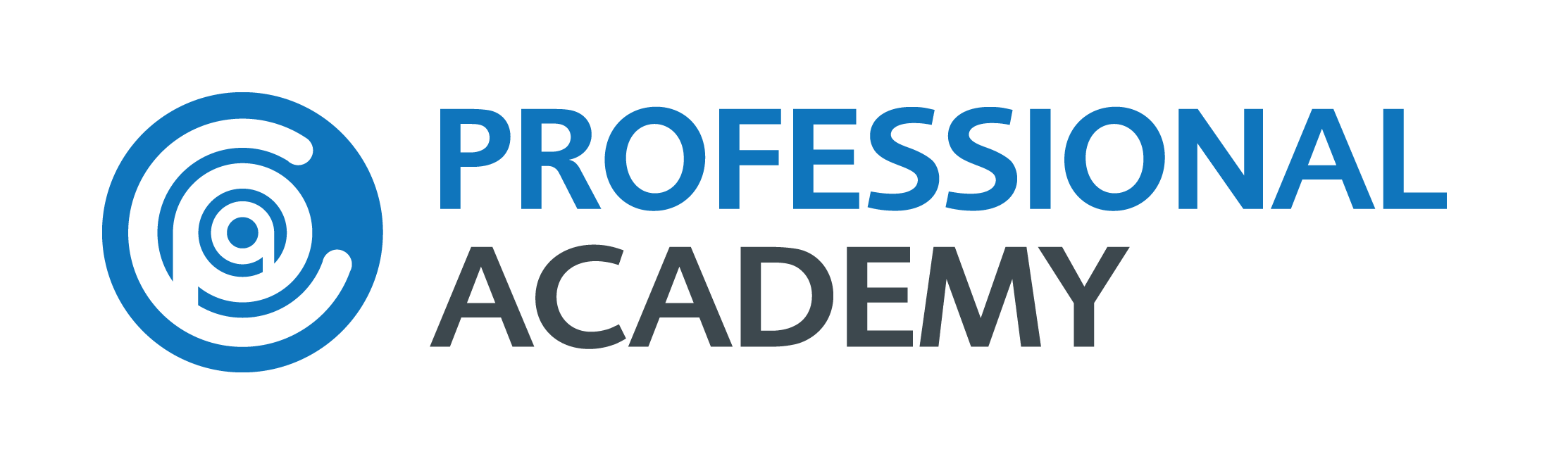 Professional Academy